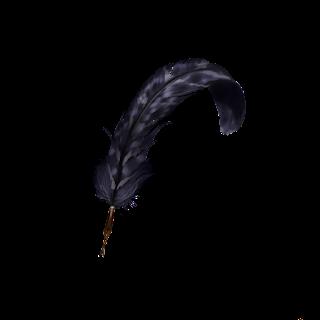 Una lussuosa penna d'aquila