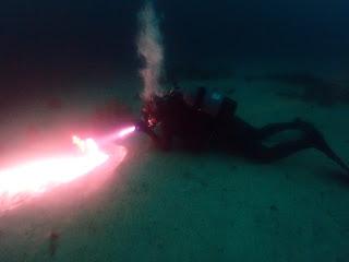 2021年10月11日の柏島ダイビング