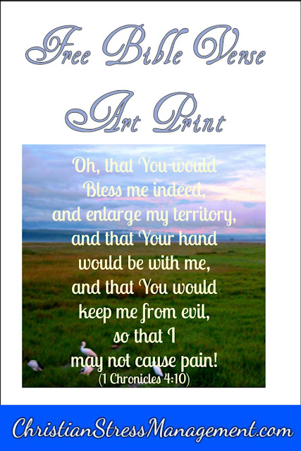 O that You would bless me indeed and enlarge my territory, and that Your hand would be with me, and that You would keep me from evil, so that I may not cause pain! (1 Chronicles 4:10) Bible verse art print.