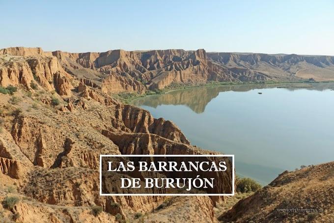 Ruta por las Barrancas de Burujón, Toledo