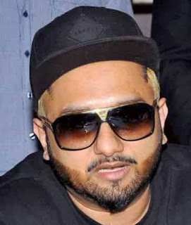 Yo Yo Honey Singh Bio