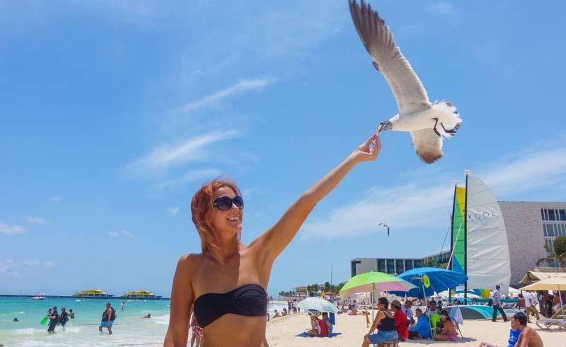 Stay Busy in Playa del Carmen