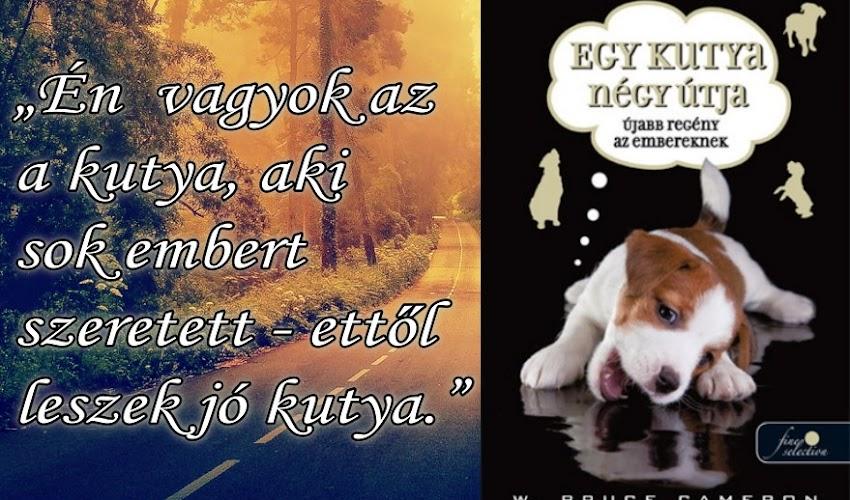 W. Bruce Cameron: Egy kutya négy útja (Egy kutya négy élete 2.)