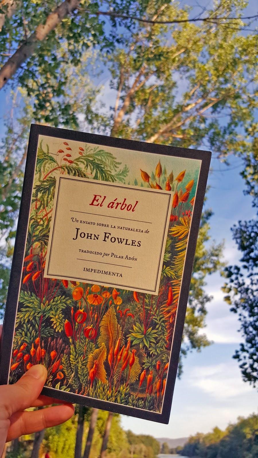 Lo Que Leo Lo Cuento El árbol John Fowles