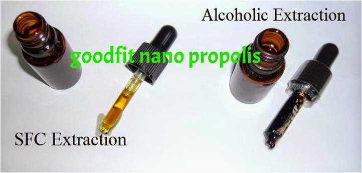pengolahan propolis nano