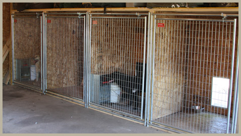 Rational preparedness the blog notes on building a for Dog kennel in garage ideas
