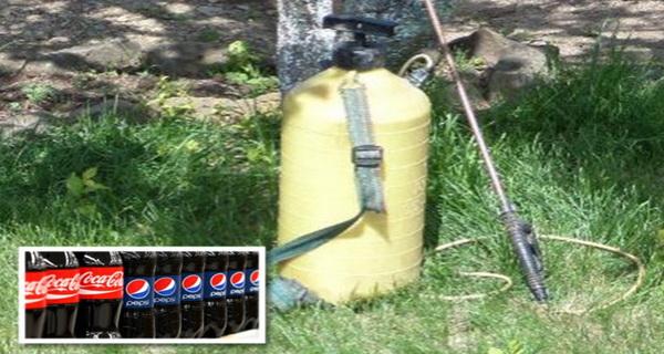 india foloseste insecticid cu pepsi si cola