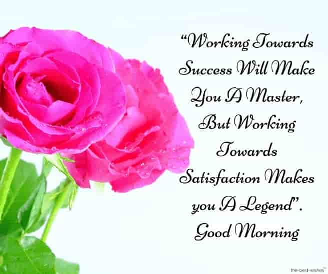 motivational good morning sms with pink rose