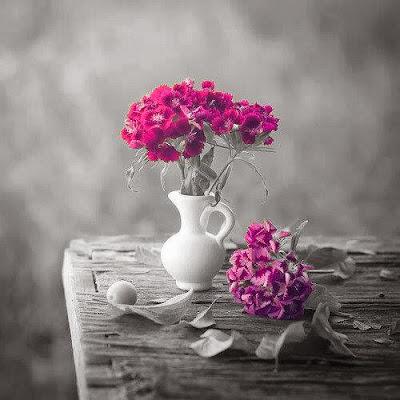 nice flowers image