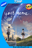 Your Name (2016) Latino HD 720p - 2016