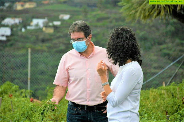 El Programa de Agricultura Sostenible del Cabildo asesora a 63 agricultores de La Palma