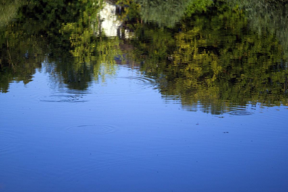 Wasserspiegelungen am Neckar