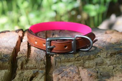 Collare in cuoio e Biothane Gold HiFlex rosa con fibbia in acciaio inox adatto a cani di piccola taglia