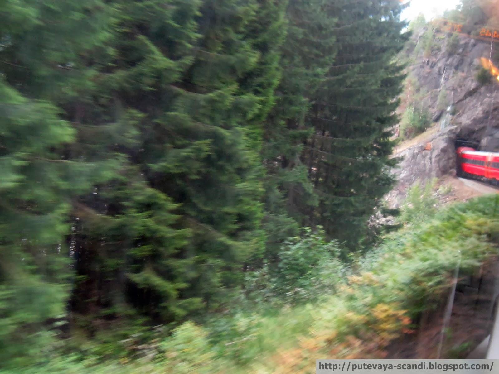 норвежский поезд входит в подземелье