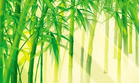 Belajar Dan Berguru Pada Pohon Bambu