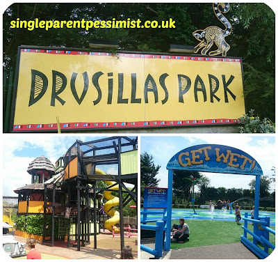A Birthday Treat To Drusillas Park