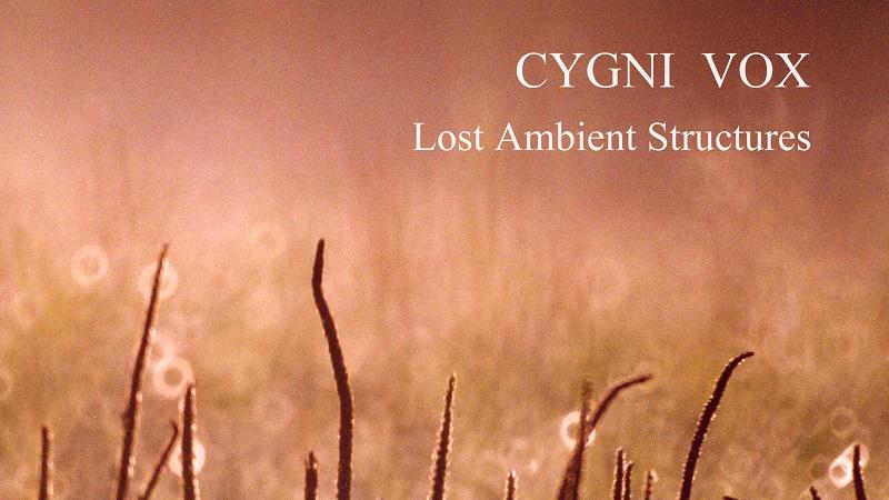 11 июня 2018 года:«Lost Ambient Structures» — Вышел новый альбом проекта «Cygni Vox»