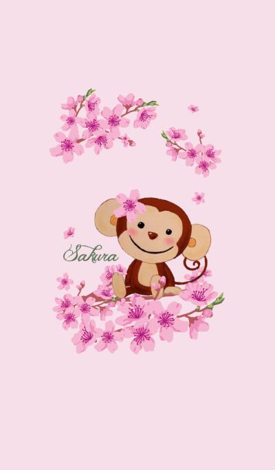 Smiling little monkey~Sakura