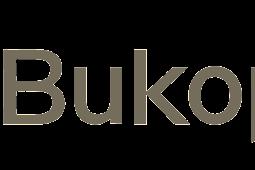Download Logo KB Bukopin Vektor AI