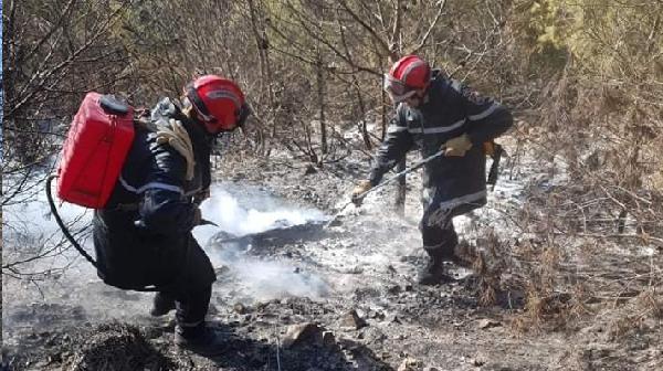 التحقيق في  حرائق أتلفت  21 هكتار من المساحات الغابية بالمرسى