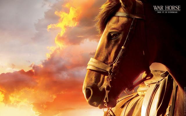 Caballo de War Horse