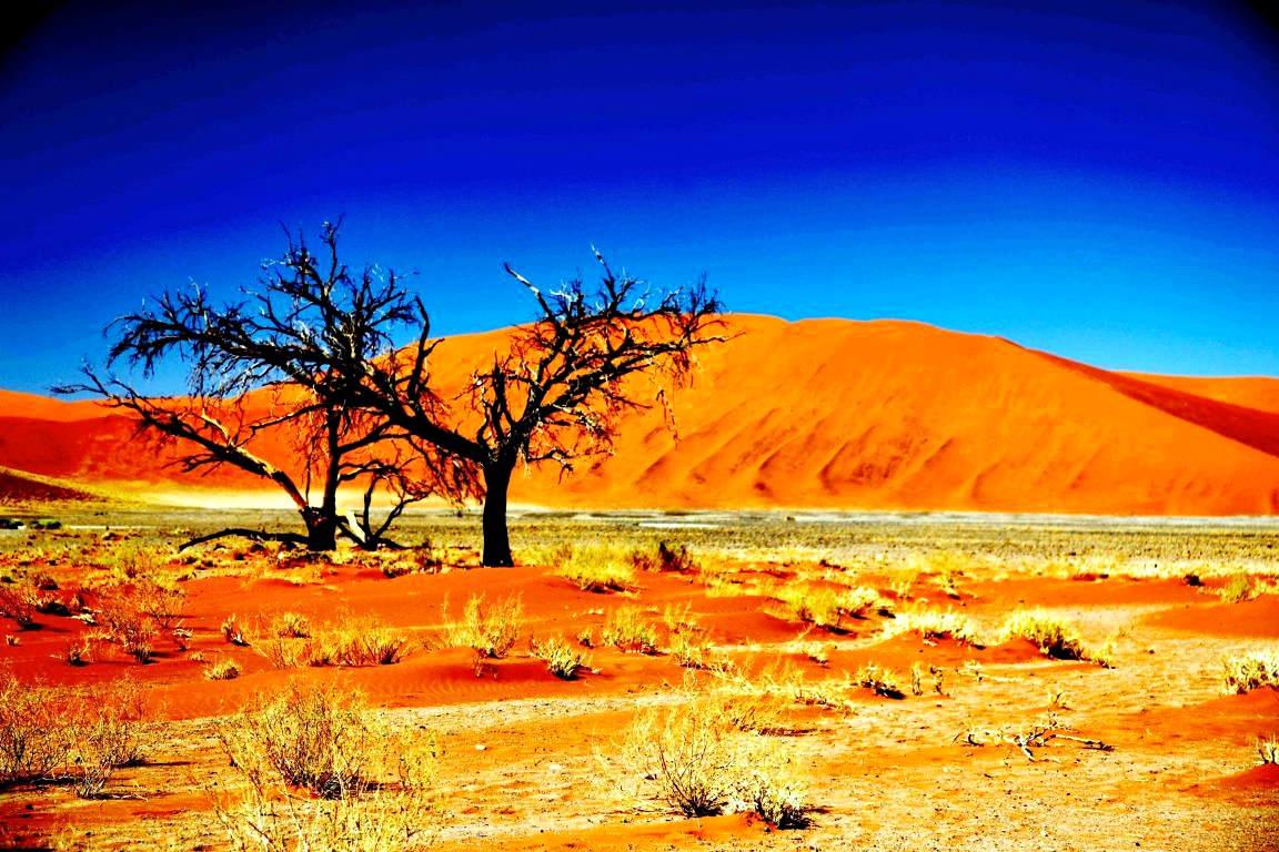 Namib-Naukluft National Park Namibia