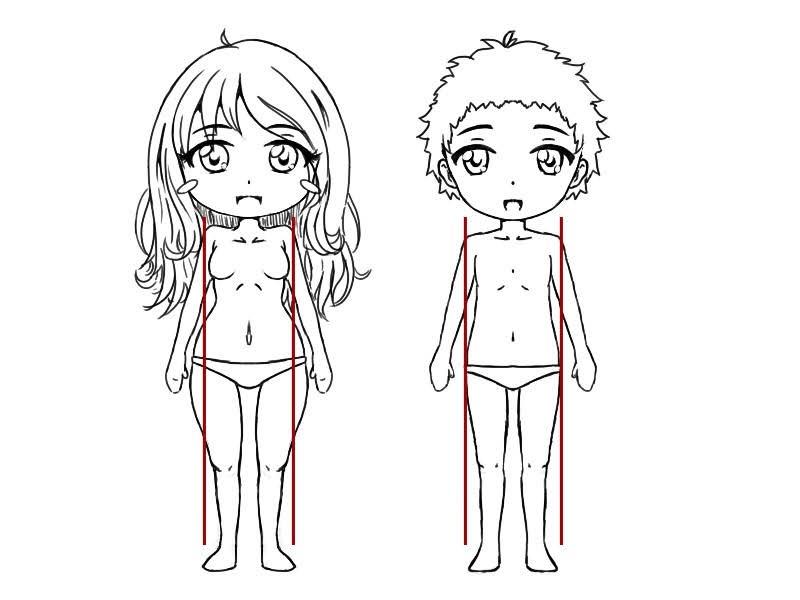 Différences entre le corps d'un garçon et d'une fille chibi