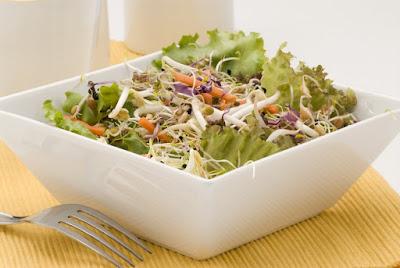 Dietas Salada de broto de Alfafa reeducação alimentar