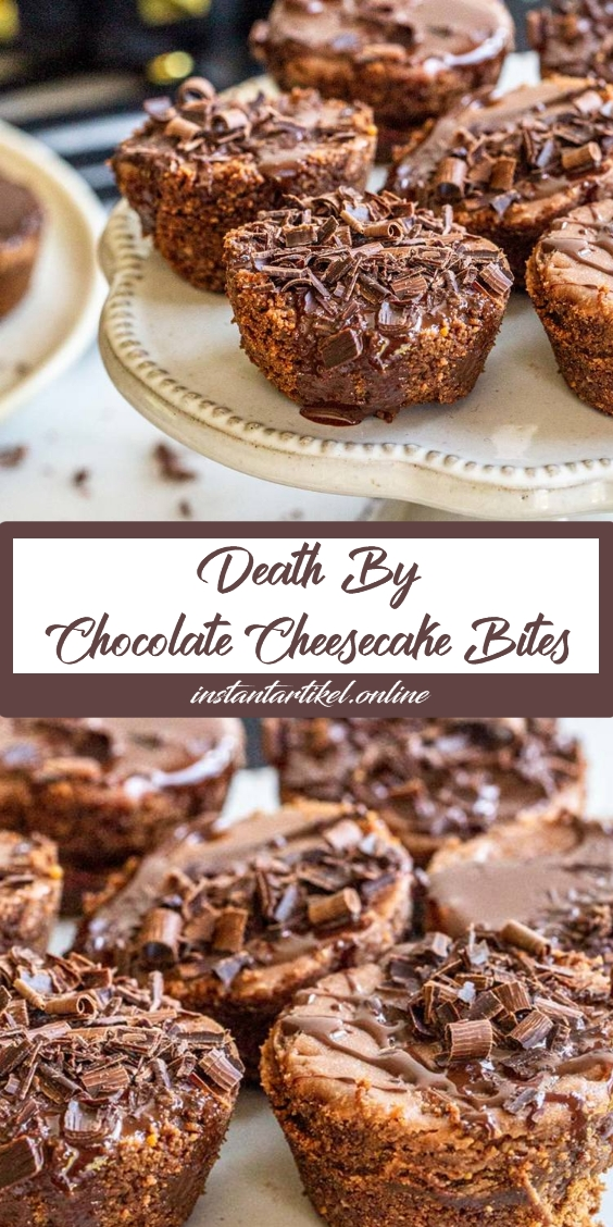 Perfect for Hallowen Death-by-Chocolate Cheesecake Bites