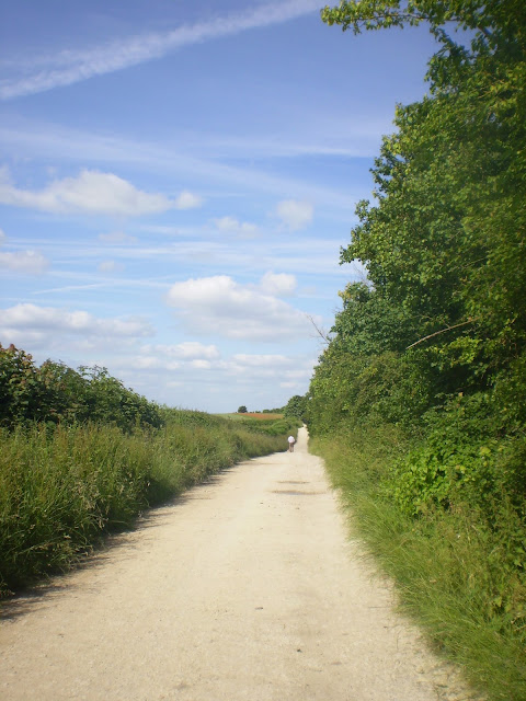 Long winding path in the countryside