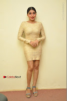 Actress Pooja Roshan Stills in Golden Short Dress at Box Movie Audio Launch  0144.JPG