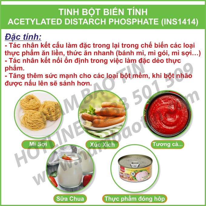 Tinh Bột Biến Tính Acetylated Distarch Phosphat - INS1414
