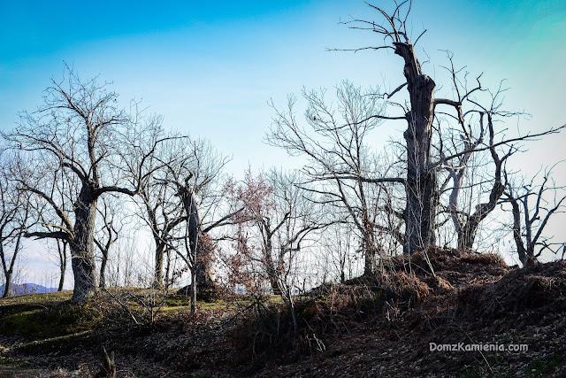 Gamberaldi trekking, Dom z Kamienia blog