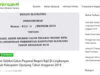 Pengumuman Hasil Akhir CPNS 2018 Kabupaten Sijunjung