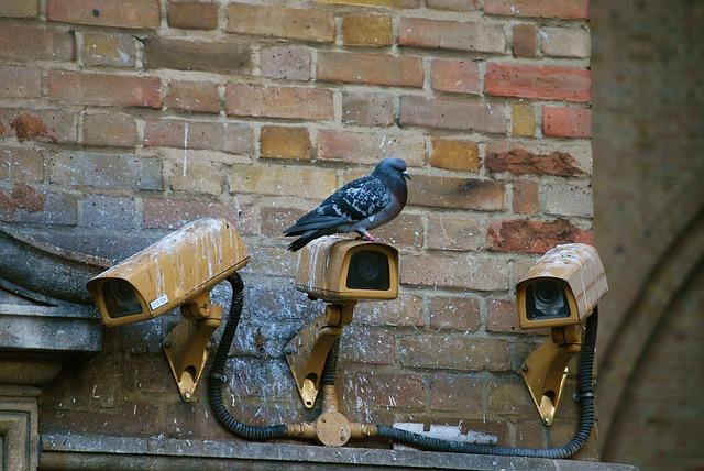 3 Fungsi CCTV untuk Bisnis
