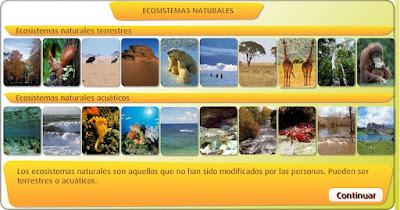 http://www.primaria.librosvivos.net/archivosCMS/3/3/16/usuarios/103294/9/5EP_Cono_cas_ud5_187/frame_prim.swf