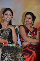 Pichuva Kaththi Tamil Movie Audio Launch Stills  0035.jpg