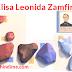 एलिसा लियोनिडा ज़ैमफायरेस्कू दुनिया की पहली महिला इंजीनियर