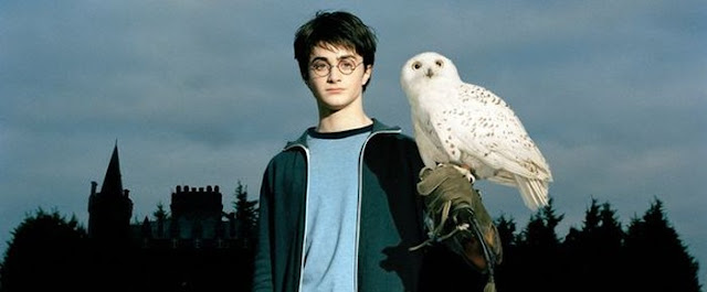 95. Harry Potter