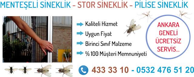 sineklik fiyatları Ankara