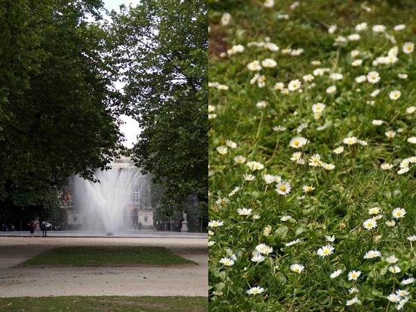 Brüsseler Parks - Brunnen und Gänseblümchen