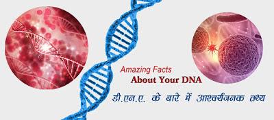 डी.एन.ए. के बारे आश्चर्यजनक तथ्य DNA Facts in Hindi