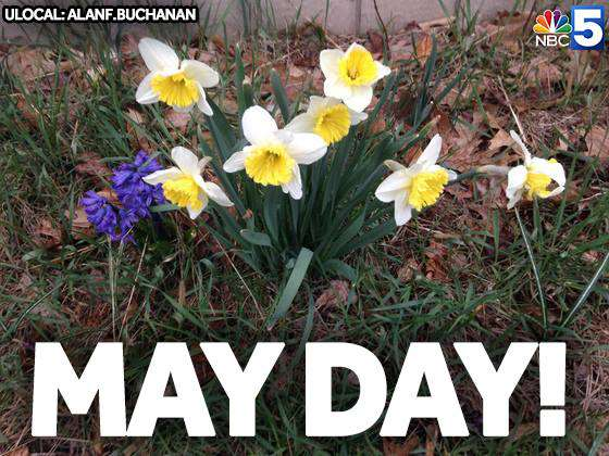 May Day Wishes Awesome Picture