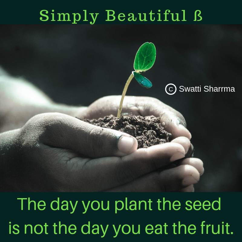 Quotes on seed, plants and fruits.