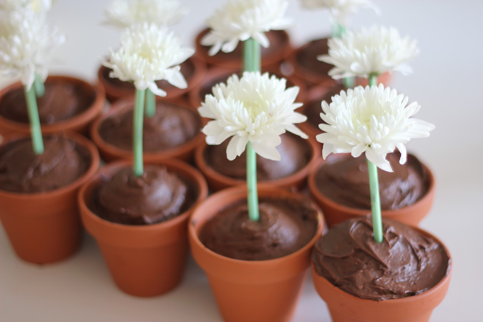 The Imagination Tree & Easy Flower Pot Cupcakes - The Imagination Tree
