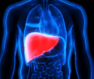 هل تزول دهون الكبد،دهون الكبد وكيفية التخلص منها،اكلات تقلل من دهون الكبد،دهون الكبد واضرارها،اسهل طريقة لازالة دهون الكبد.
