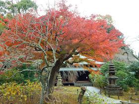 東慶寺の紅葉