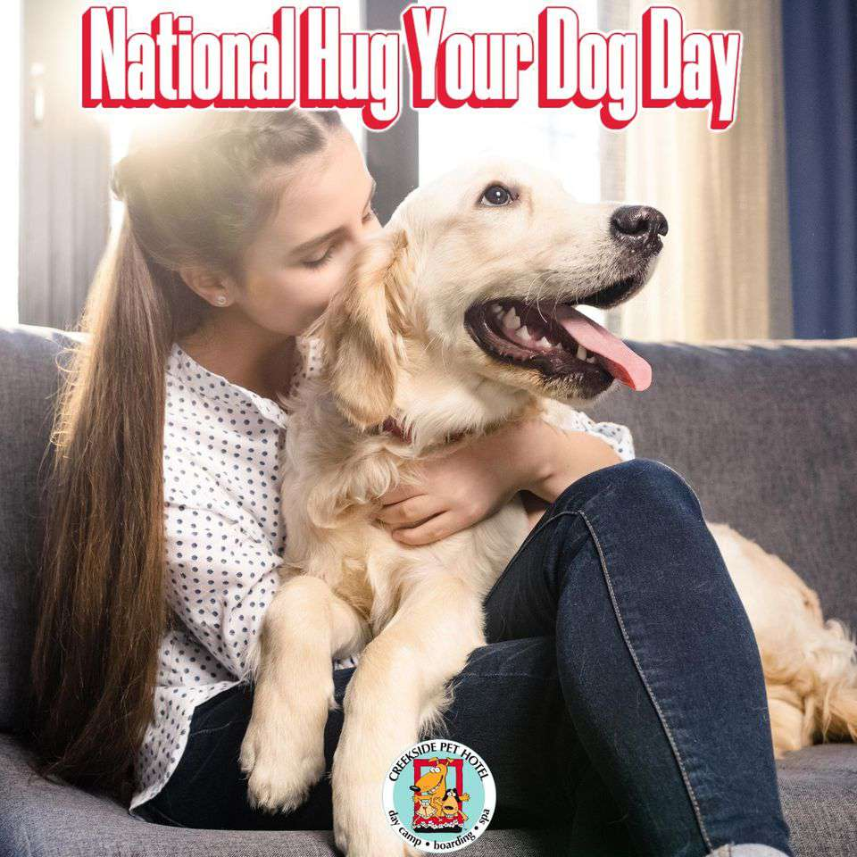 National Hug Your Dog Day Wishes Awesome Images, Pictures, Photos, Wallpapers