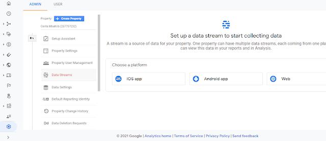 Tampilan Google Analytics
