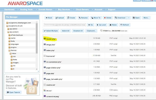 Utilizando el Hosting, a través del cpanel: Una vez que has ingresado al panel de control de tu hosting, debes ingresar al File Manager o Administrador de Archivos, seleccionas la carpeta de tu sitio web, luego abres la carpeta wp-content, e ingresas a la carpeta Themes, seleccionas el nombre de tu plantilla o template, ubicas el archivo header.php y lo abres para editar. Dentro de este archivo debes ubicar las etiquetas <head> </head> donde realizaras el cambio que necesites.
